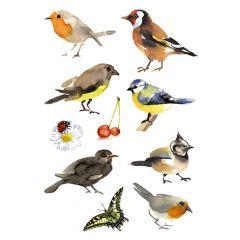 Herma stickers Decor fugle (3)